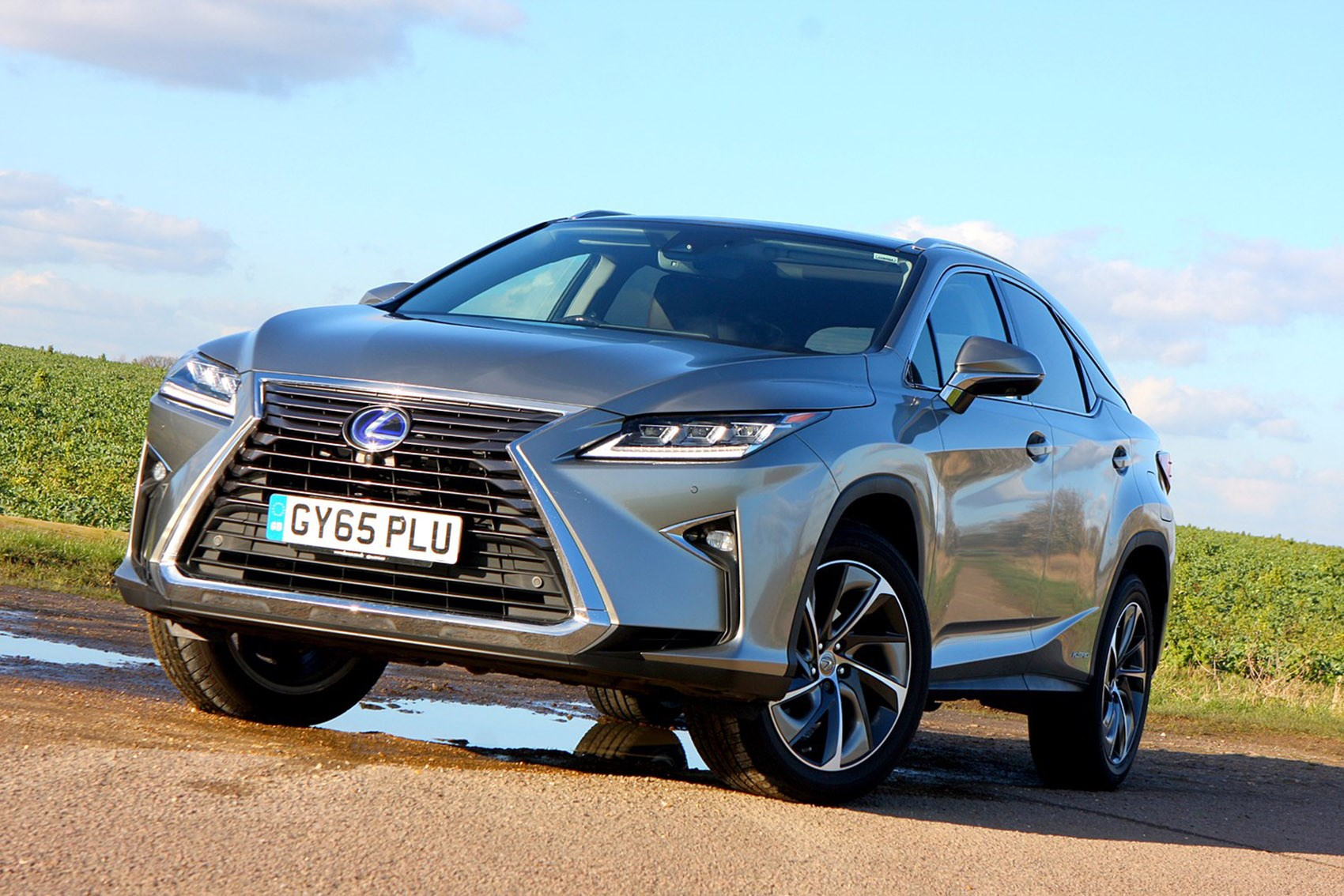 Lexus RX - the best family SUVs