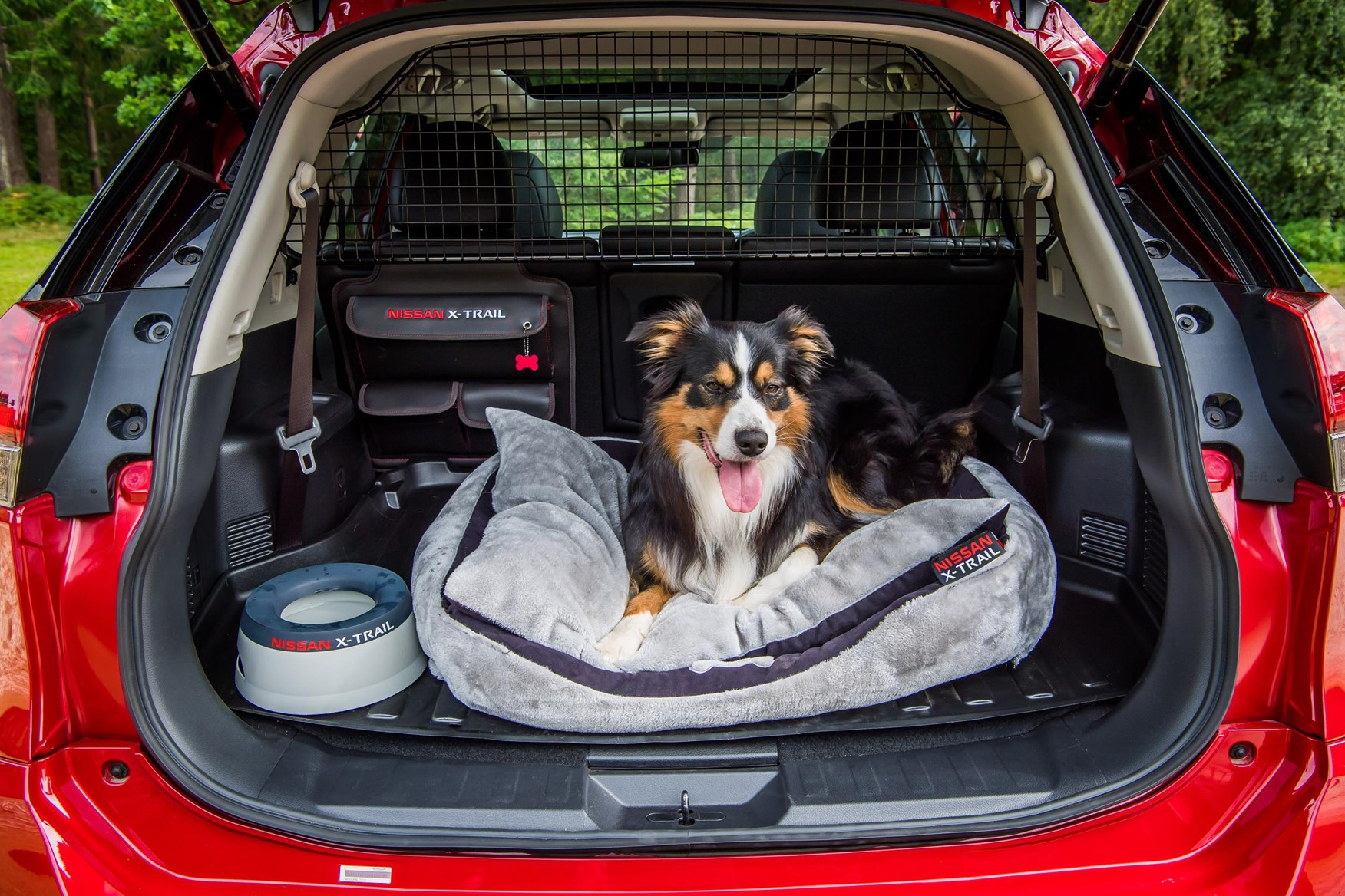 Nissan launches Paws pack for dog-owning X-Trail drivers