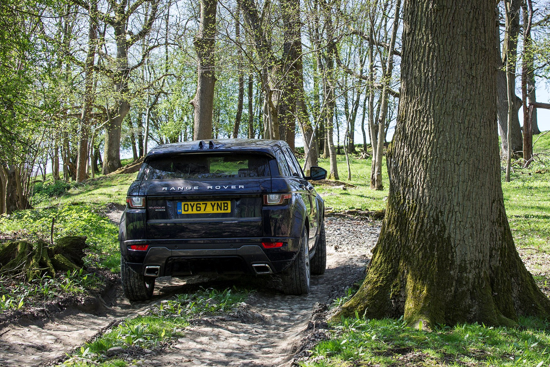 Range Rover Evoque off-road at Eastnor Castle