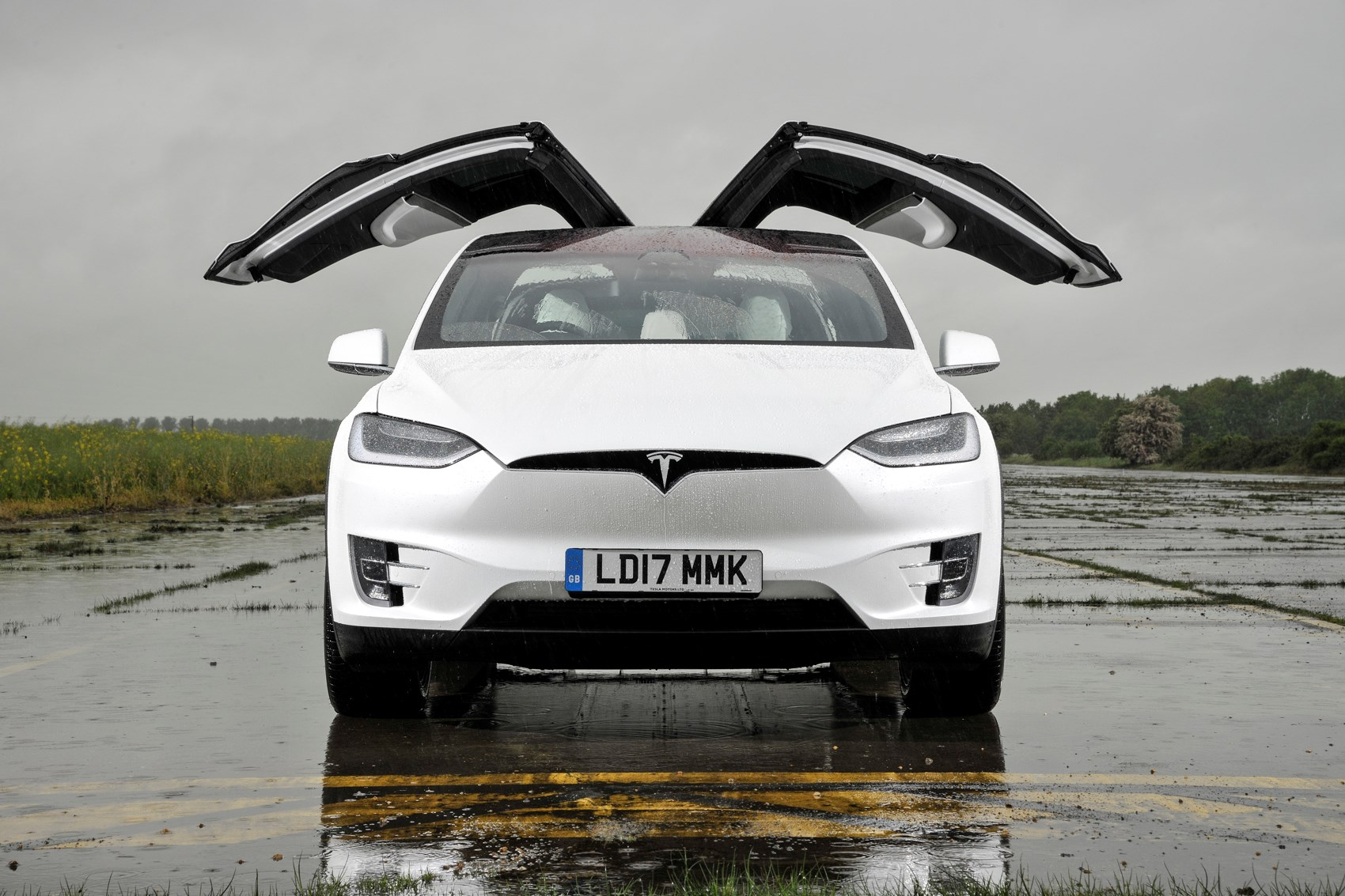 2017 white Tesla Model X doors open