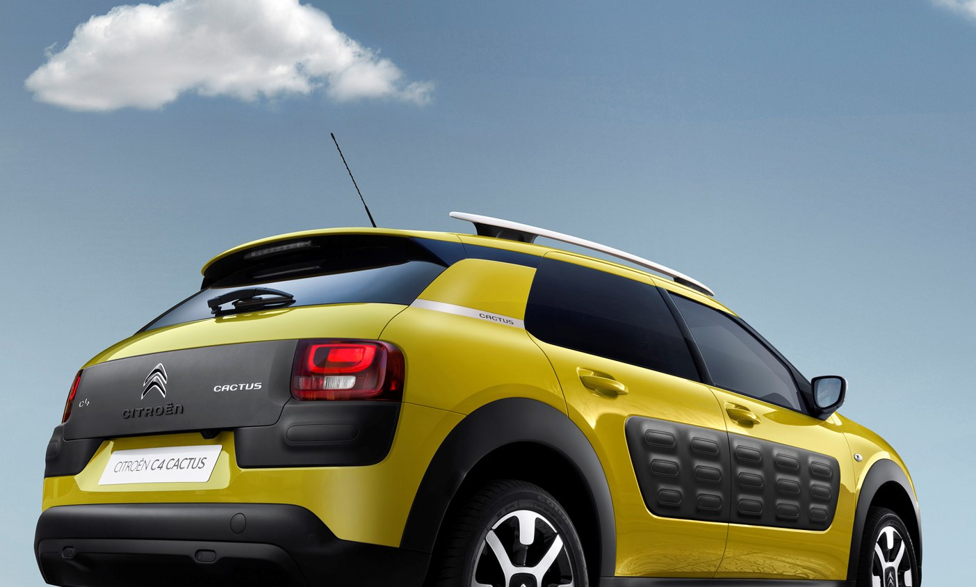 2014 c4 cactus quotes. Black Bedroom Furniture Sets. Home Design Ideas