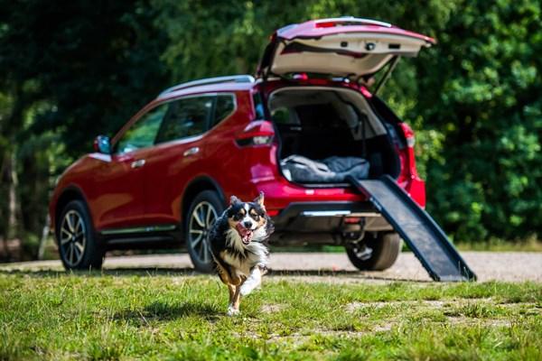 Nissan introduces 'dog-friendly' X-Trail options